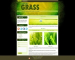 Wonder-Grass
